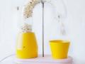 Popcorn machine by Jolene Carlier_6