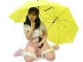 thanko-2-in-1-niko-ichi-umbrella_2