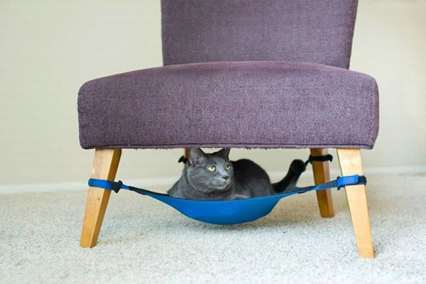 CatCrib for you cat
