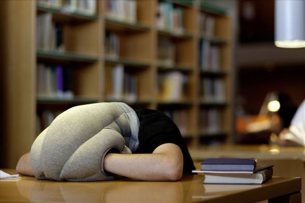 Ostrich Pillow design