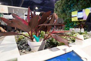 Flower Pot for Gardeners