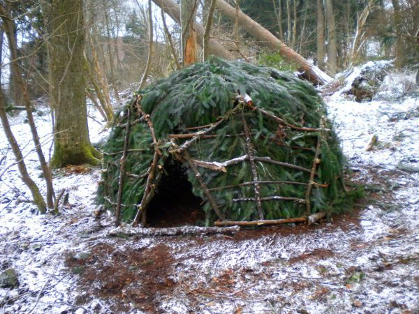 Geodesic dome out of natural tree branches by Kev Langan_4