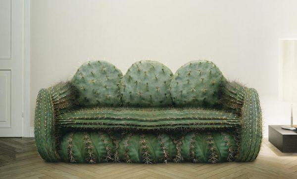 The Cactus Sofa