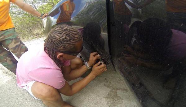 Live cat stuck inside her rental car_4