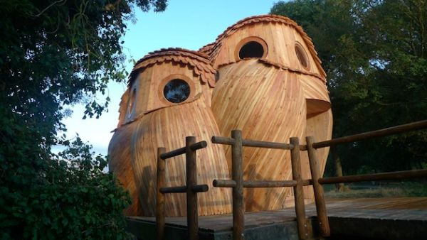 Owl shaped timber cabin_2
