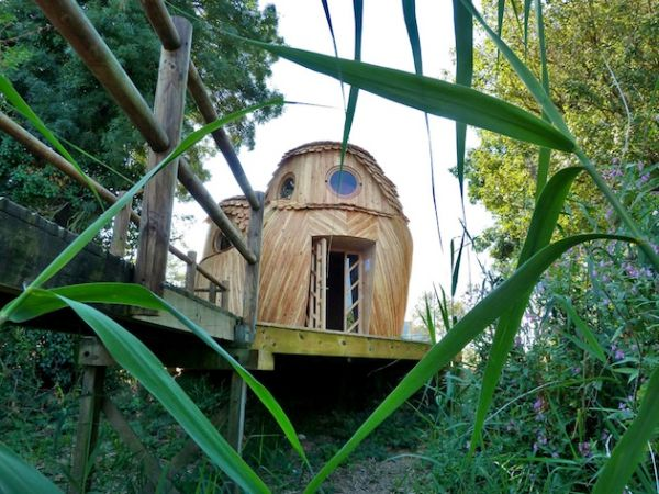 Owl shaped timber cabin_3