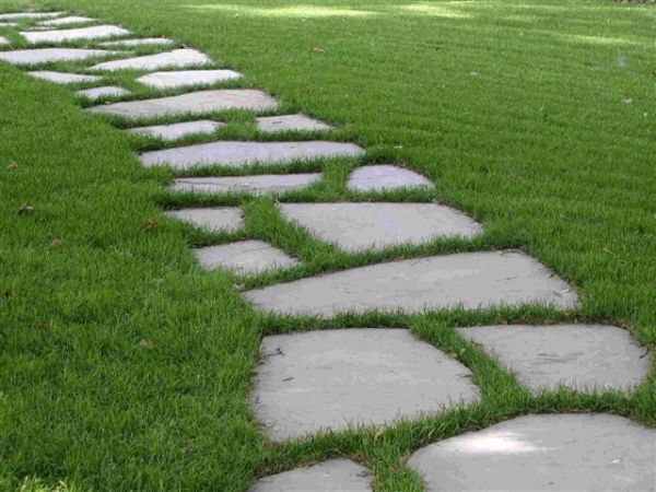 10 Garden Path Ideas For Your Improved Landscaping