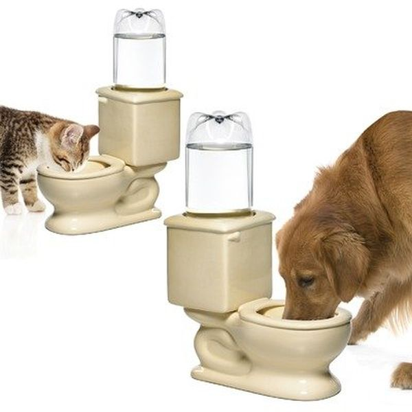 CSB Dog Toilet Bowl keeps your pet hydrated_3