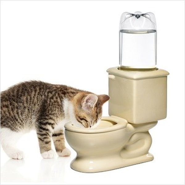 CSB Dog Toilet Bowl keeps your pet hydrated_4