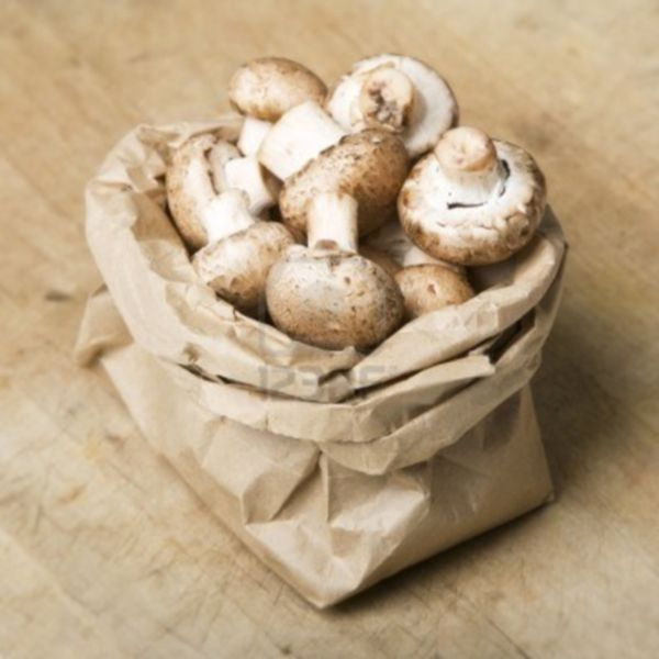 Mushrooms stored in perforated bags increase their shelf life