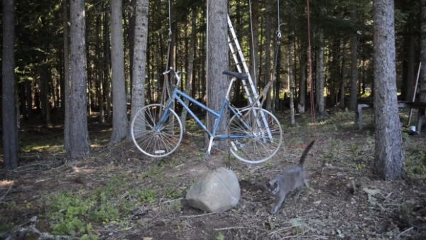 A heavy chain keeps the bicycle from being pulled up by the counterweight