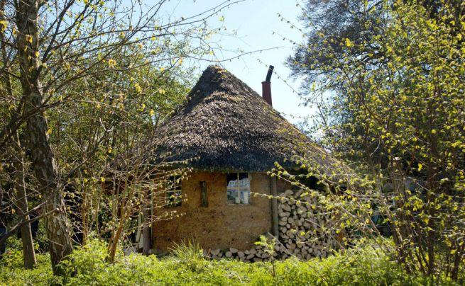 Michael Buck creates cob house for $250_4