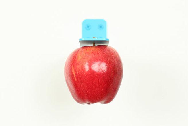 Newton Apple Holder_1