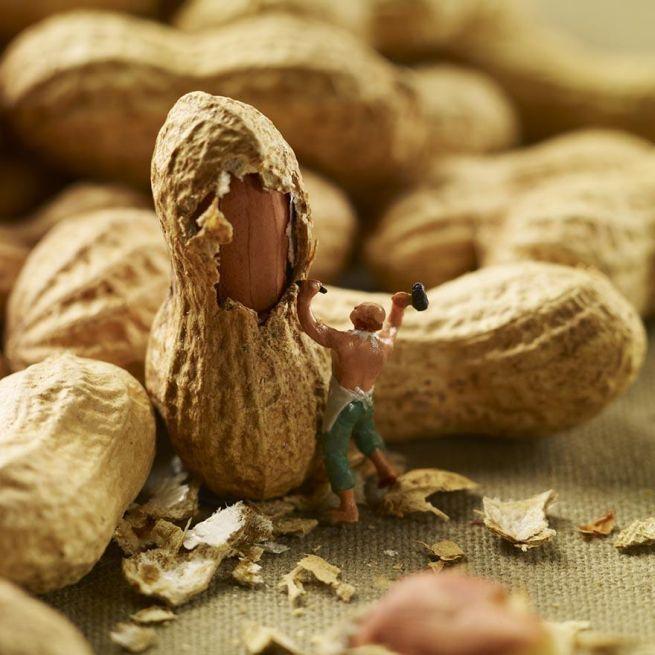 Amazing food art by Pierre Javelle and Akiko Ida_3