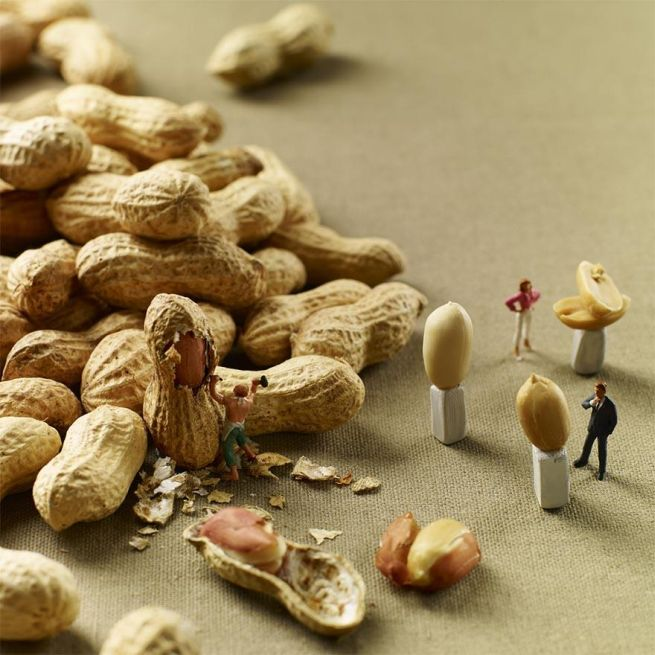 Amazing food art by Pierre Javelle and Akiko Ida_4