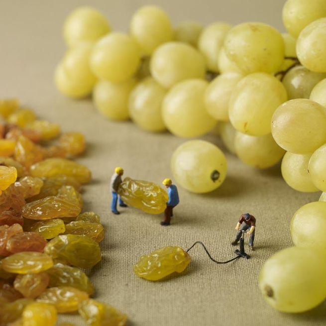 Amazing food art by Pierre Javelle and Akiko Ida_5