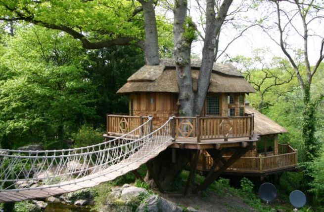 Blue Forest Treehouse Cottage