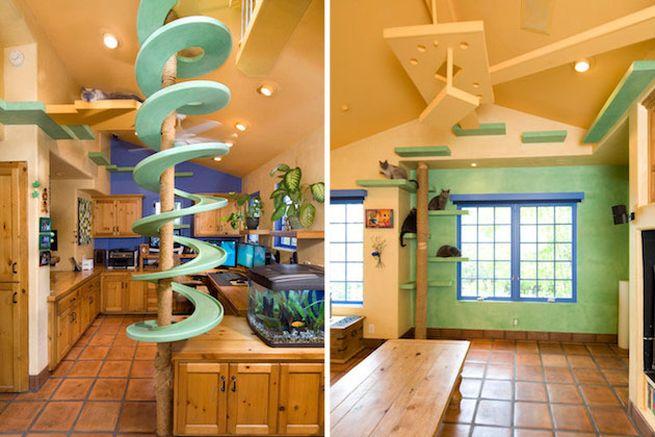 California cat house by Trillium Enterprises_1