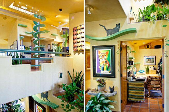 California cat house by Trillium Enterprises_5