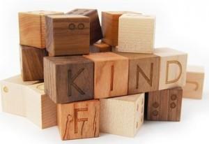 Braille alphabet wooden blocks