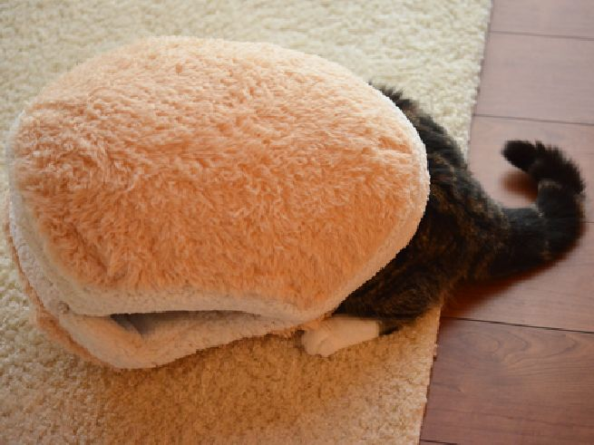 Cat Burger Pillow_1