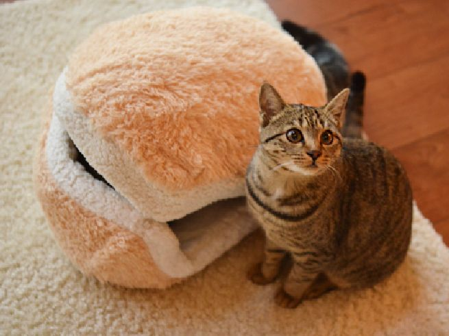 Cat Burger Pillow_2