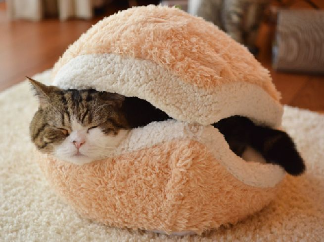 Cat Burger Pillow_3