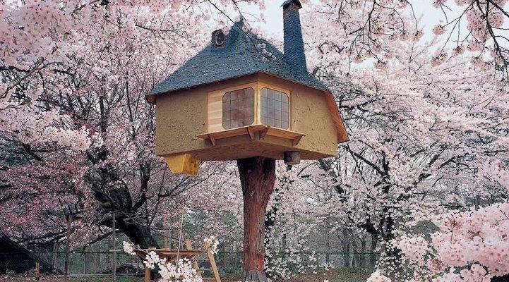 fujimori cherry blossom treehouse