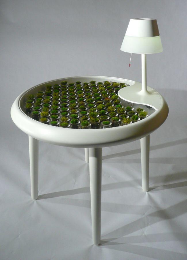 Bio-photovoltaic Moss Table