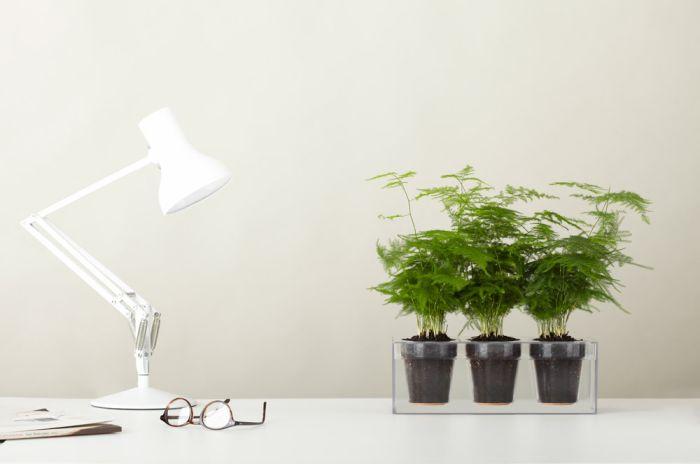 Boskke Cube self watering planter_3