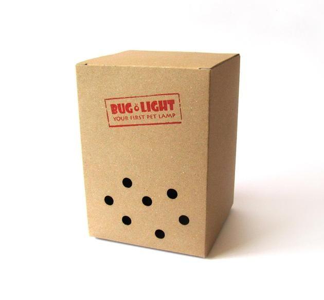 Bug Light_2