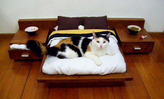 Cat Bed from Cedel Pets & Style