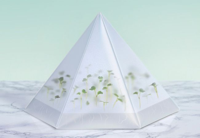 Microgarden by Tomorrow Machine_1