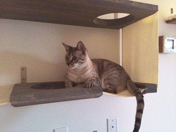 3 level cat bunker_6
