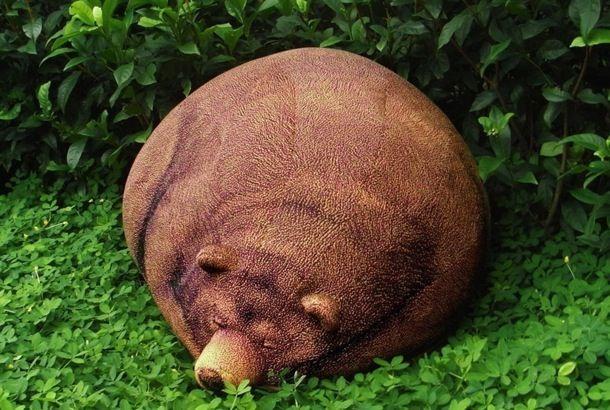 Bear Bean Cushion_1