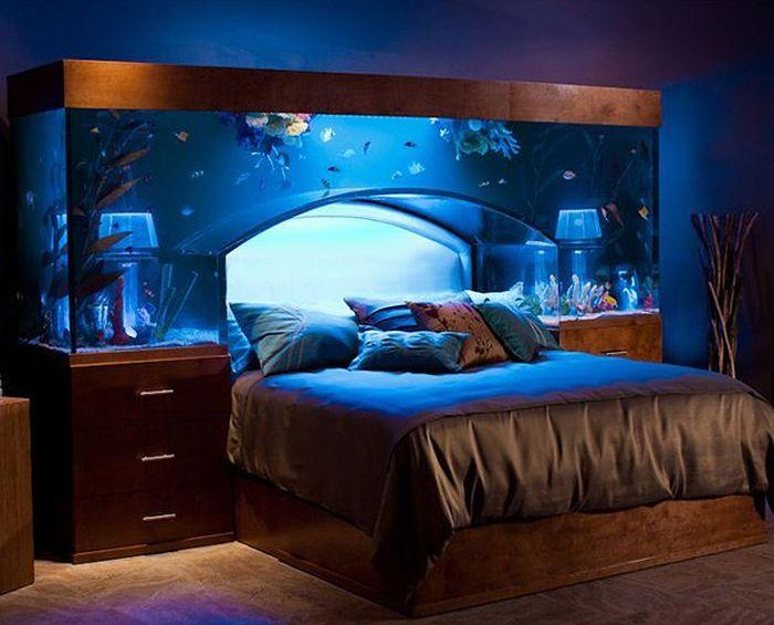 Bed with aquarium headboard