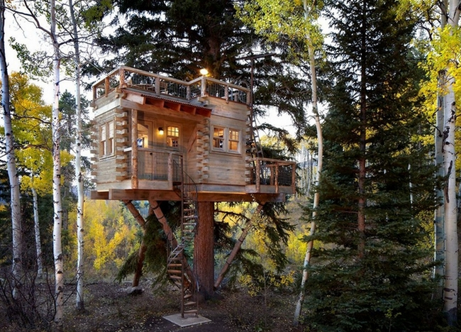 Colorado Treehouse by Missy Brown