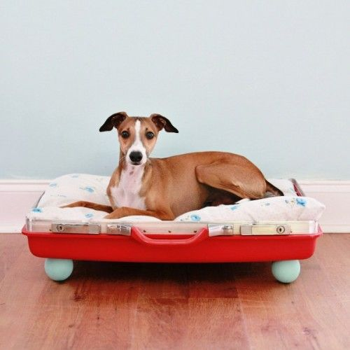 DIY Pet Bed With Wooden Ball Supports