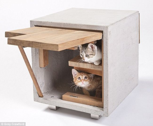Cat Cube by Standard Architecture Design_3