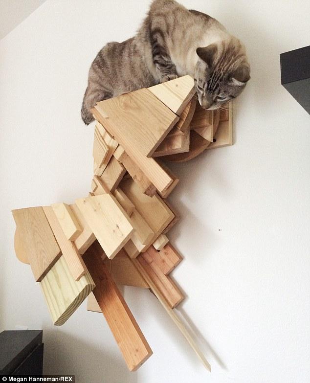Cat_Designer_Furniture_4