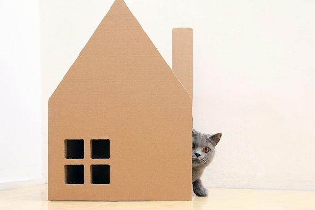 Krabhuis, the cardboard house for cats_1