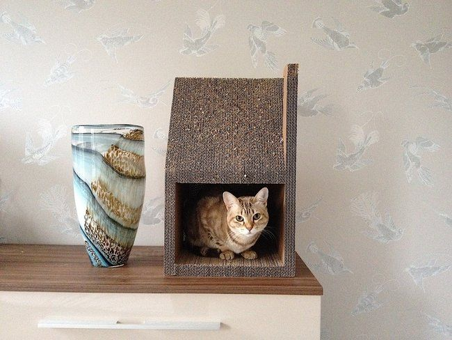 Krabhuis, the cardboard house for cats_4