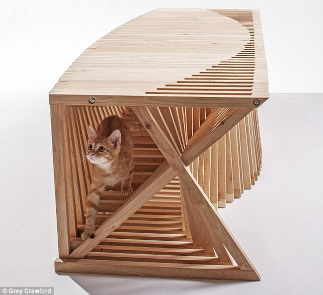 Rib System cat house_1