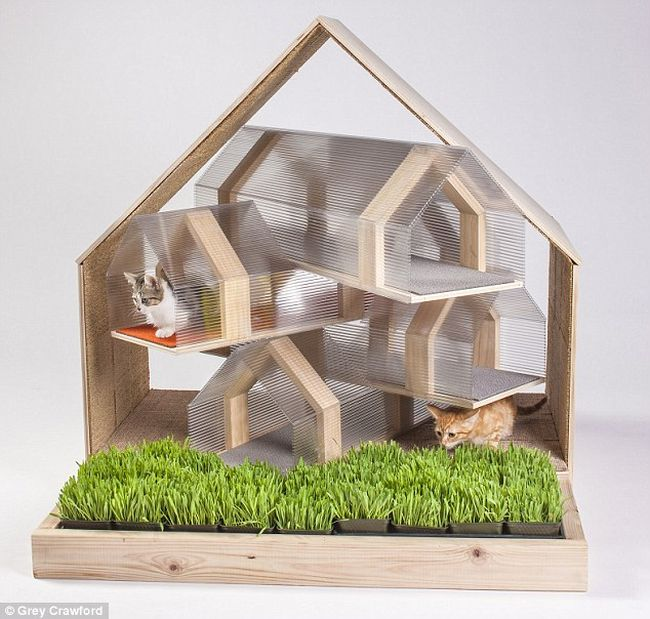The HOK cat shelter_5