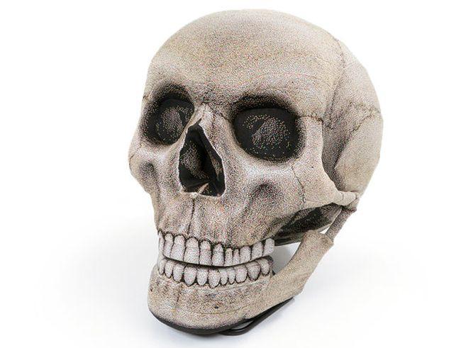 Skull Chair_1