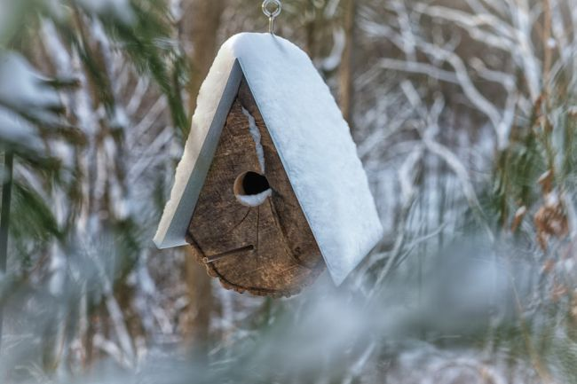 DIY Birdhouses made with wood stumps_7