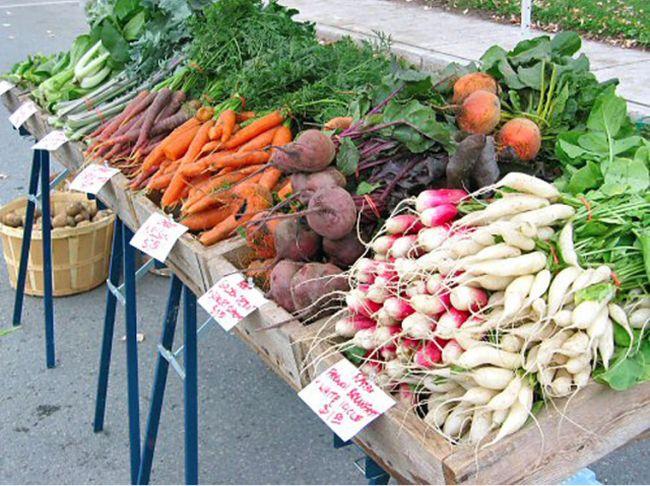 Eco-friendly Thanksgiving_1