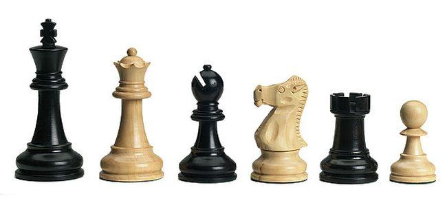 DGT Bluetooth Chess Set_2