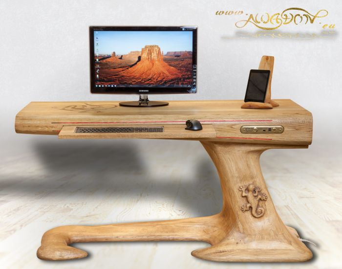 DIY Lizard Desk_2