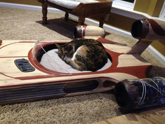 Star Wars landspeeder cat furniture by Roxy's Dream_2